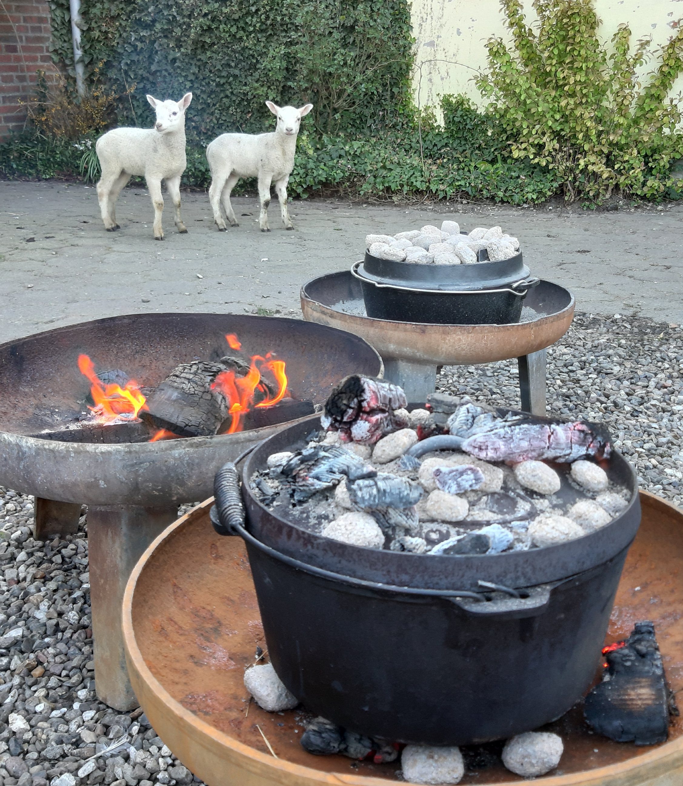 Dutch Ovens - Workshop - Bonfire - Bålmad - Food